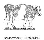 Brindled Milk Cow On A Meadow ...