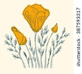 Orange Poppy Flower Vector ...