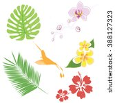 set of tropical leaves and... | Shutterstock .eps vector #388127323