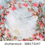 Frame Of Spring Flowers On A...