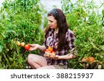 young smiling agriculture woman ... | Shutterstock . vector #388215937