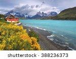 torres del paine national park  ... | Shutterstock . vector #388236373