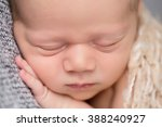 newborn baby sleeping on... | Shutterstock . vector #388240927