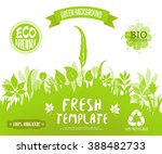 100  organic  eco friendly  ... | Shutterstock .eps vector #388482733