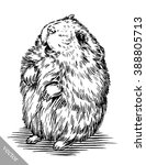 engrave ink draw hamster... | Shutterstock .eps vector #388805713