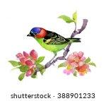 bird illustration on watercolor ... | Shutterstock . vector #388901233