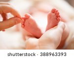mother holds in his hands a... | Shutterstock . vector #388963393