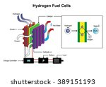 a fuel cell is a device that... | Shutterstock .eps vector #389151193