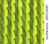 3d background  cactus texture ...   Shutterstock . vector #389518087