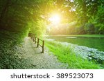 forest path by the lake on a... | Shutterstock . vector #389523073