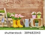 Gardening Tools On The Grass I...