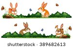 Rabbits Being Happy In The...