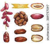 Dates  Hand Painted Watercolor...