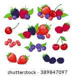 berries set vector illustration.... | Shutterstock .eps vector #389847097