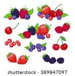 Berries Set Vector Illustratio...