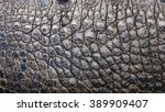 Close Up Texture Of Alligator...
