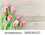 pink tulips on old wooden...   Shutterstock . vector #390239227