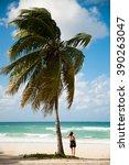 woman observing caribbean sea... | Shutterstock . vector #390263047