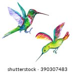 two exotic birds. watercolor... | Shutterstock . vector #390307483