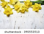 beautiful fresh narcissus on... | Shutterstock . vector #390553513