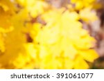 Blurred Background Of Autumn...