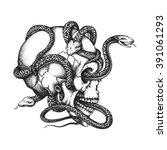 Hand Drawn Human Skull Entwine...