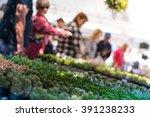 People At A Plant Sale  Nursery