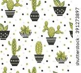 Cute Cacti  Flowerpots....