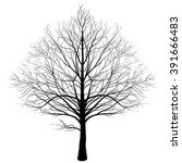 Vector Tree  Without A...