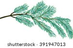 illustration with pine branch... | Shutterstock .eps vector #391947013
