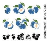 plum set. vector   Shutterstock .eps vector #392077633
