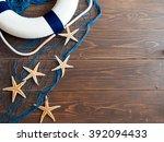 marine still life   Shutterstock . vector #392094433