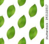 green seamless leaves isolated...   Shutterstock .eps vector #392133517