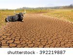 Global Warming  Drought In The...