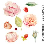 pink spring flowers | Shutterstock . vector #392429137