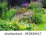 beautiful walled garden | Shutterstock . vector #392830417