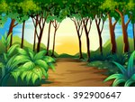 nature scene with track in the... | Shutterstock .eps vector #392900647