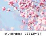 spring tree blossom | Shutterstock . vector #393129487