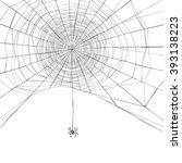 Halloween Background. Spider...