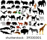 Collection Of Wild Animals...