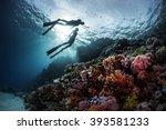 two freedivers swimming... | Shutterstock . vector #393581233