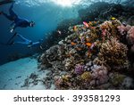 two freedivers swimming... | Shutterstock . vector #393581293