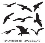 seagull set silhouettes on the... | Shutterstock .eps vector #393886147