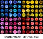 mega pack of 80 in 1 natural... | Shutterstock . vector #393933553