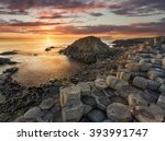 giant's causeway  antrim ... | Shutterstock . vector #393991747
