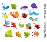 Insect And Leaves Collection O...