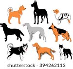 dogs breeds   recognizable... | Shutterstock .eps vector #394262113