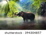 Wild Elephant In The Beautiful...