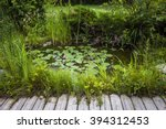 Small Pond As Part Of...