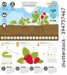 Gardening Work  Farming...